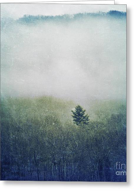 New England Morning Greeting Cards - Foggy Morning Greeting Card by HD Connelly