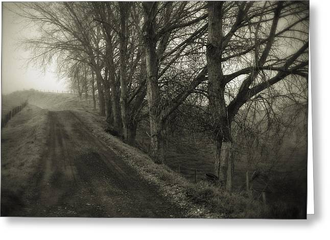 Autumn Photographs Greeting Cards - Foggy trail Greeting Card by Les Cunliffe