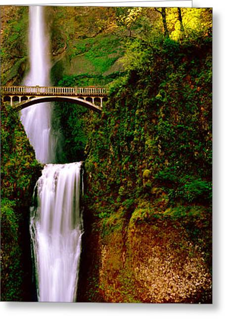 White River Scene Greeting Cards - Footbridge In Front Of A Waterfall Greeting Card by Panoramic Images