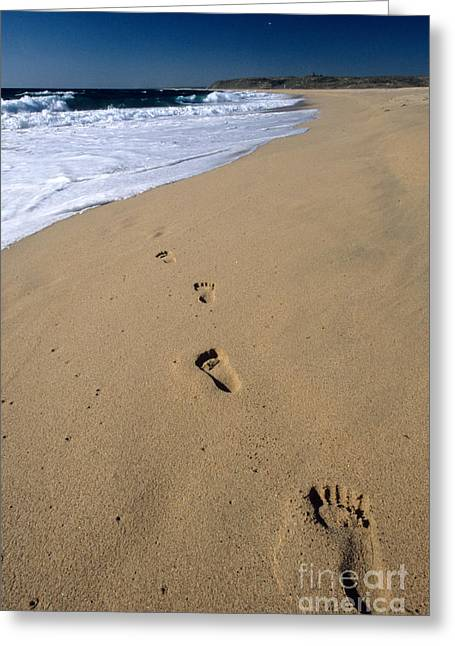 Pacific Ocean Prints Greeting Cards - Footprints On The Beach Greeting Card by William H. Mullins