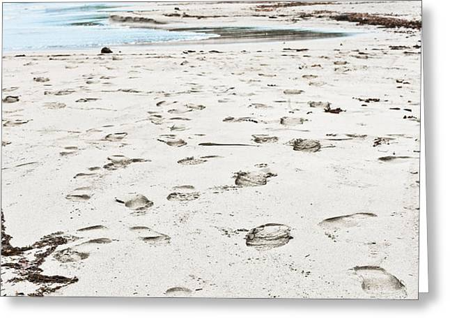 Footsteps Greeting Cards - Footprints Greeting Card by Tom Gowanlock