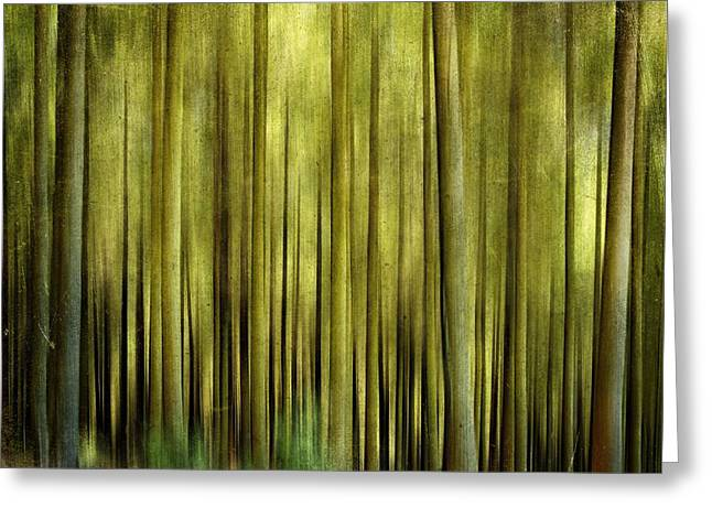 Forestry Greeting Cards - Forest Greeting Card by Bernard Jaubert