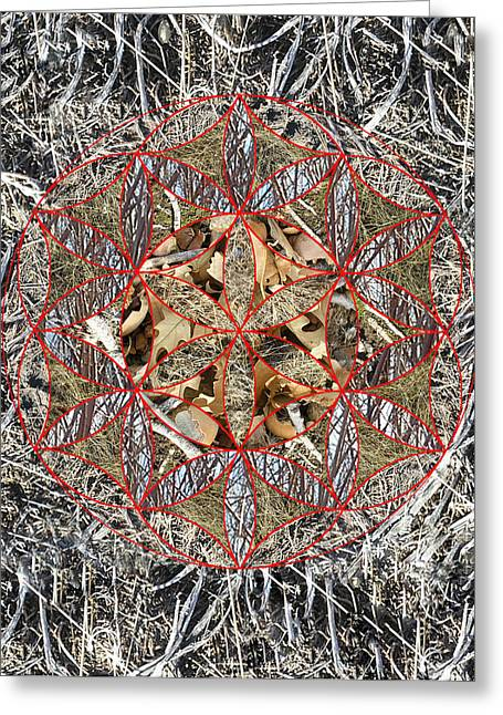 Sacred Geometry Greeting Cards - Forest Floor 2 Greeting Card by Sacred Geometry