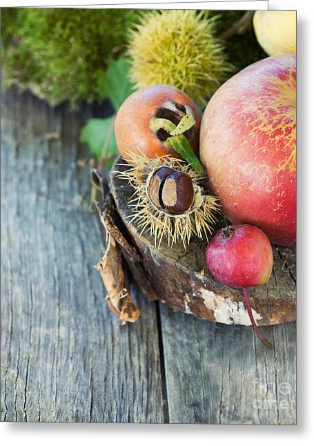 Npetolas Greeting Cards - Forest fruit Greeting Card by Mythja  Photography