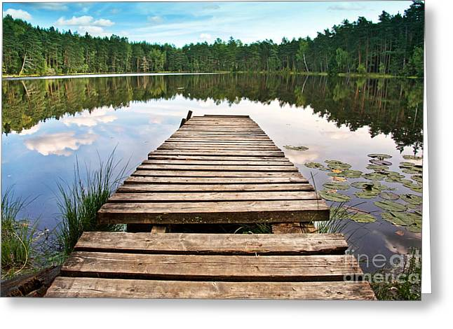 Wooden Platform Greeting Cards - Forest Lake Greeting Card by Maigi
