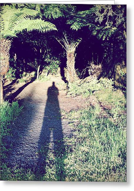 Silhouettes Greeting Cards - Forest shadow Greeting Card by Les Cunliffe