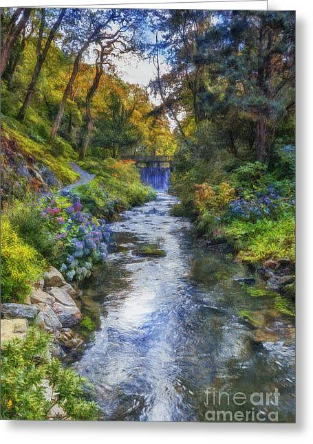 Beautiful Creek Digital Greeting Cards - Forest Stream Greeting Card by Ian Mitchell