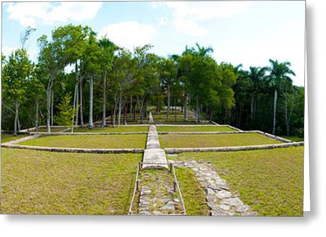 Del Rio Greeting Cards - Former Coffee Farm, Buena Vista, Las Greeting Card by Panoramic Images