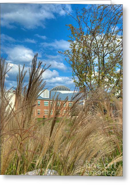 Mhs Greeting Cards - Founders Hall through the grasses Greeting Card by Mark Dodd