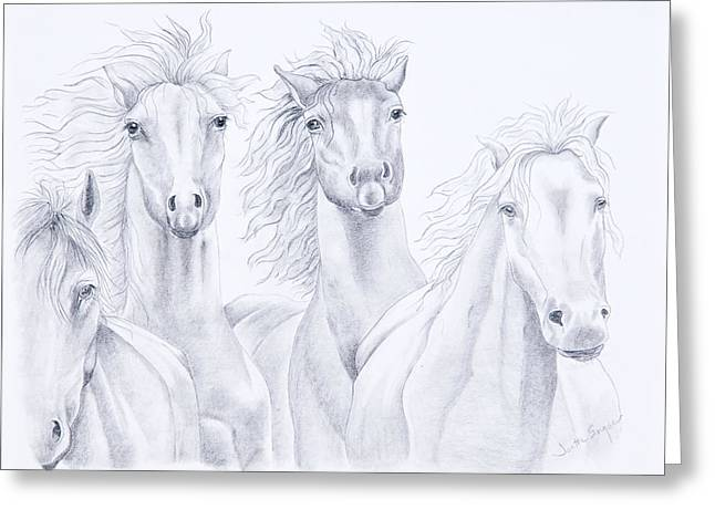 Wild Horses Drawings Greeting Cards - Four For Freedom Greeting Card by Joette Snyder