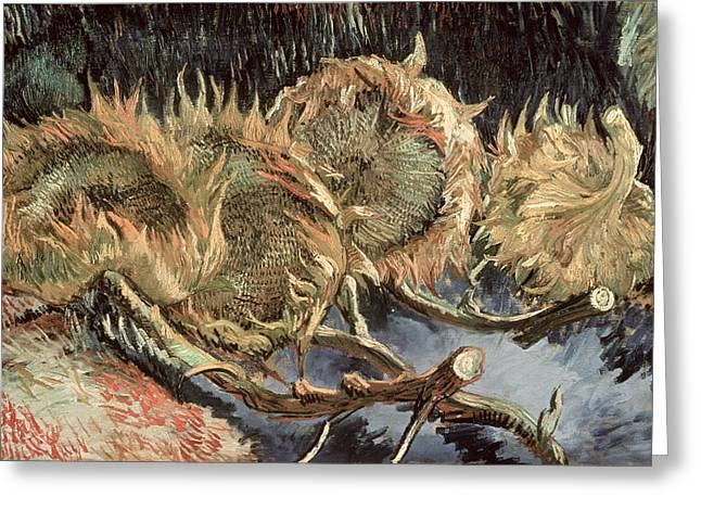 Flower Still Life Prints Greeting Cards - Four Withered Sunflowers Greeting Card by Vincent van Gogh