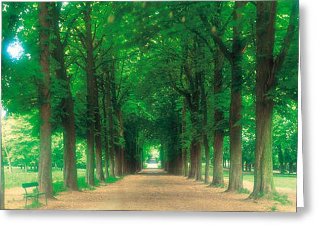 Soft Romantic Greeting Cards - France, Paris, St Cloud Greeting Card by Panoramic Images