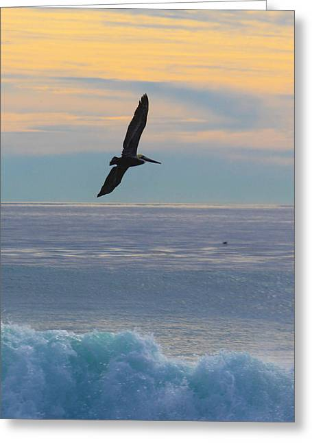 Pch Greeting Cards - Free Bird Greeting Card by M Duncans