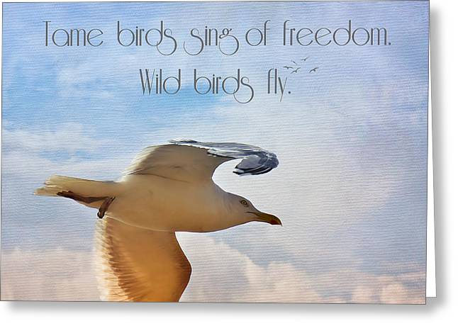 Flying Gull Greeting Cards - Freedom Greeting Card by Angela Doelling AD DESIGN Photo and PhotoArt