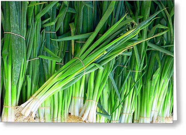 Green Beans Greeting Cards - Fresh Green Onions Greeting Card by Jeff Lowe