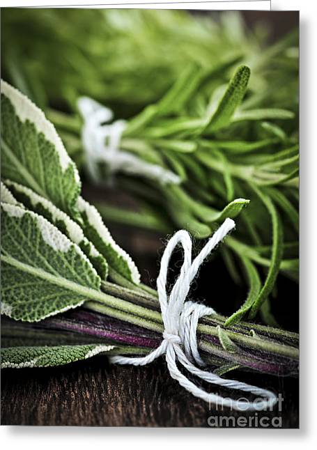 Culinary Photographs Greeting Cards - Fresh herbs in bunches Greeting Card by Elena Elisseeva