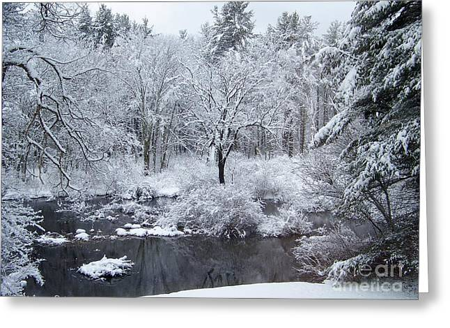 River Flooding Greeting Cards - FRESH SNOW Falls Along The Tree Lines Stream Greeting Card by Eunice Miller