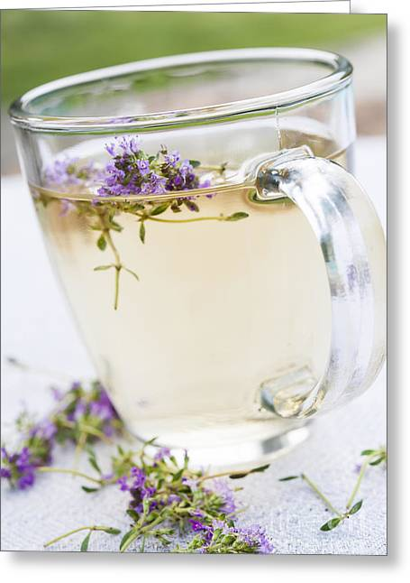 Medicinal Greeting Cards - Fresh thyme tea Greeting Card by Elena Elisseeva