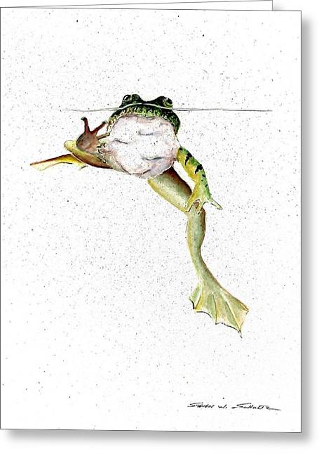 Frog On Waterline Greeting Card by Steven Schultz