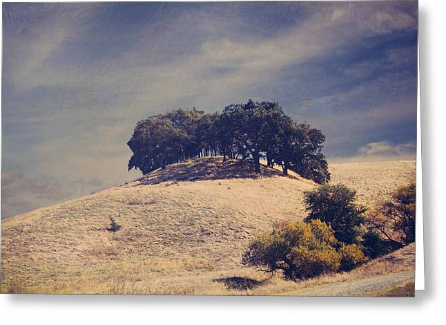 Hiking Digital Greeting Cards - From on High Greeting Card by Laurie Search