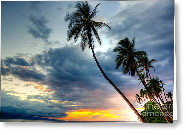 Front Street Sunset Greeting Card by Kelly Wade