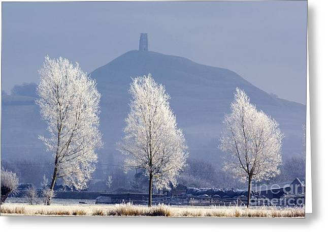 Glastonbury Greeting Cards - Frost-covered Trees And Glastonbury Tor Greeting Card by Duncan Shaw