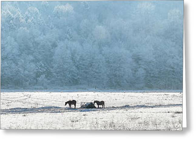 New England Snow Scene Greeting Cards - Frosty Morning Greeting Card by Bill  Wakeley