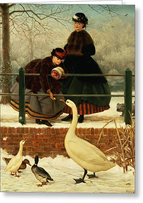 Swans... Greeting Cards - Frozen Out Greeting Card by George Dunlop Leslie