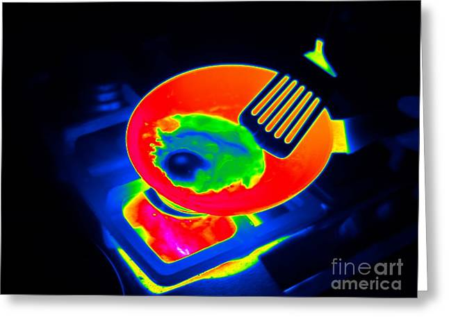 Fries Greeting Cards - Frying An Egg, Thermogram Greeting Card by Tony McConnell