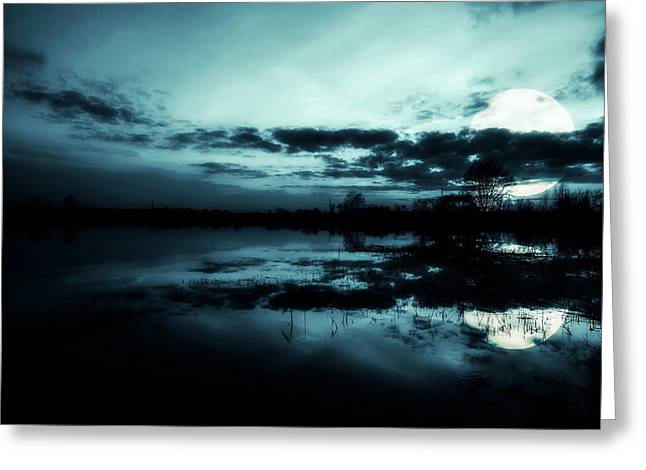 Seasonal Digital Art Greeting Cards - Full moon Greeting Card by Jaroslaw Grudzinski