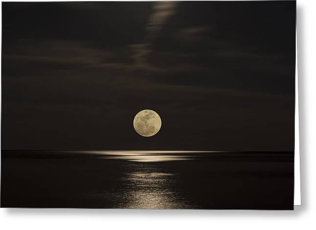 Recently Sold -  - Sea Moon Full Moon Greeting Cards - Moon Rising Over the Gulf Greeting Card by Gej Jones