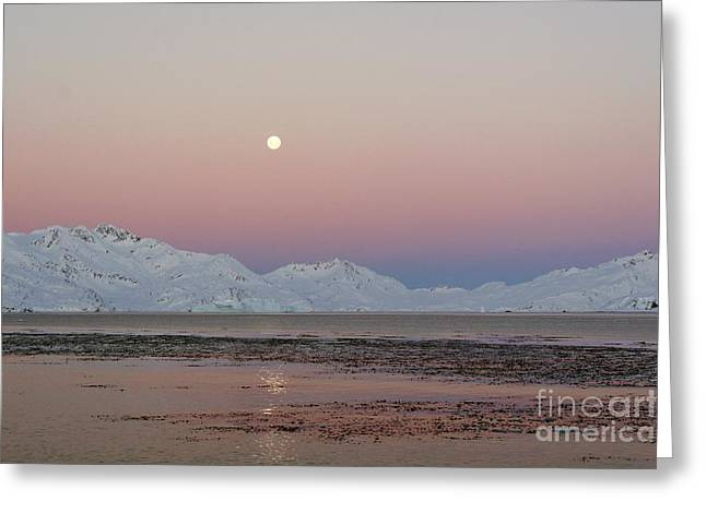 Sea Moon Full Moon Greeting Cards - Full Moon, South Georgia Greeting Card by Charlotte Main