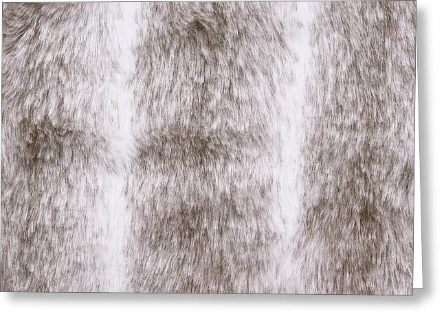 Mink Greeting Cards - Fur background Greeting Card by Tom Gowanlock