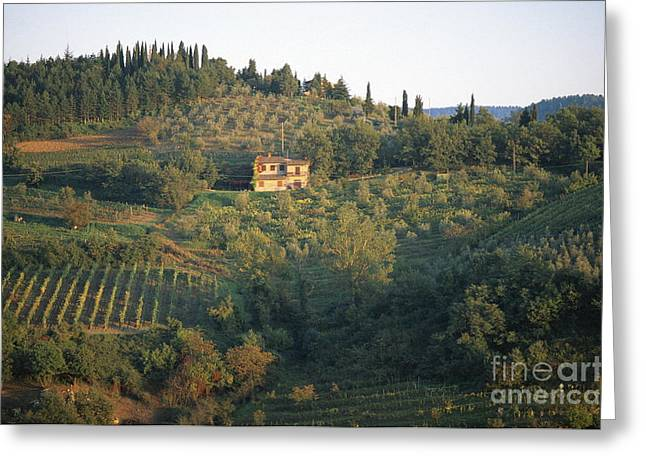 Chianti Greeting Cards - Gaiole Greeting Card by Chris Selby