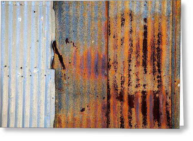 Galvanized Greeting Card by Peter Tellone