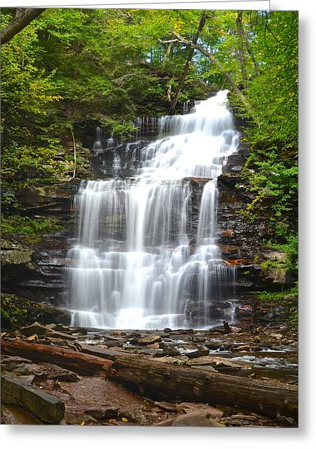 Glen Creek Greeting Cards - Ganoga Falls Greeting Card by Frozen in Time Fine Art Photography