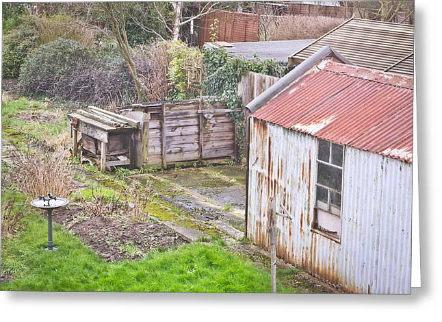 Out-building Greeting Cards - Garden shed Greeting Card by Tom Gowanlock