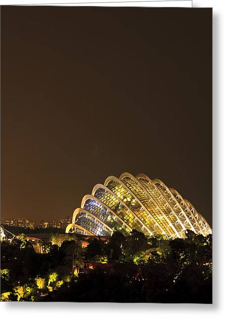 Garden Pyrography Greeting Cards - Gardens By The Bay Singapore Greeting Card by Henry MM