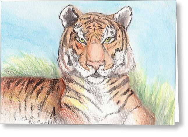 Wildcats Drawings Greeting Cards - Gardiner Greeting Card by Shana Rowe