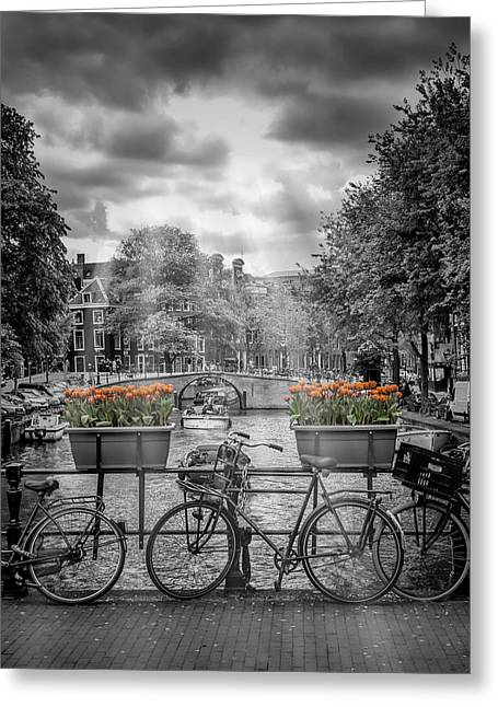 Facades Greeting Cards - Gentlemens Canal AMSTERDAM Greeting Card by Melanie Viola