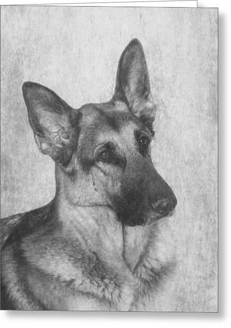 Mans Best Friend. Greeting Cards - German Shepherd Greeting Card by Angie Vogel