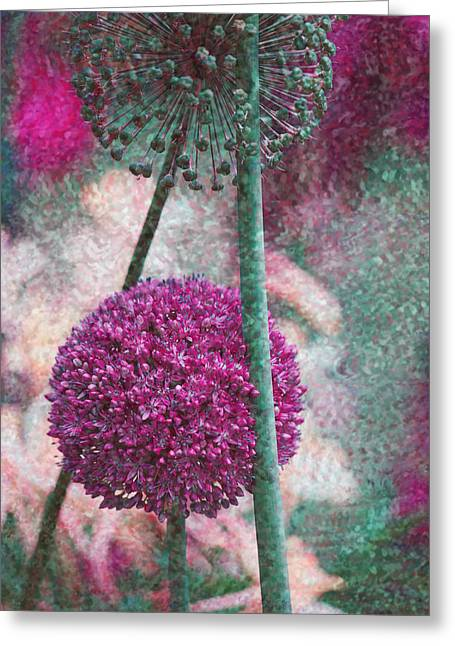 Pink Flower Prints Greeting Cards - Giant Allium Greeting Card by Bonnie Bruno