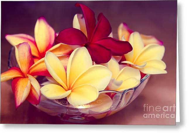 Flower Still Life Prints Greeting Cards - Gifts of the Heart Greeting Card by Sharon Mau