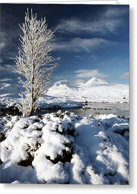Lochan Greeting Cards - Glencoe Winter Greeting Card by Grant Glendinning