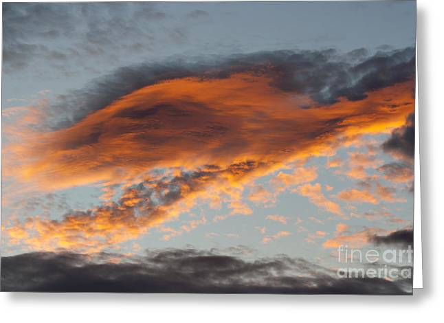 Gloaming Photographs Greeting Cards - Gloaming Greeting Card by Michal Boubin