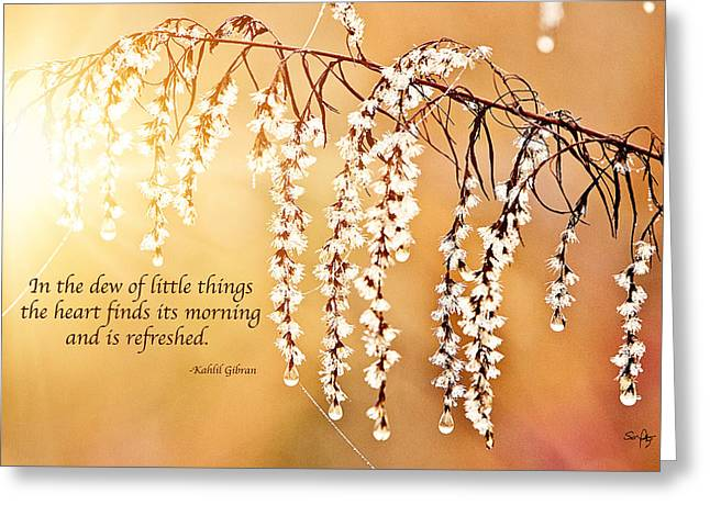 Kahlil Gibran Greeting Cards - Glorious Morning Greeting Card by Scott Pellegrin