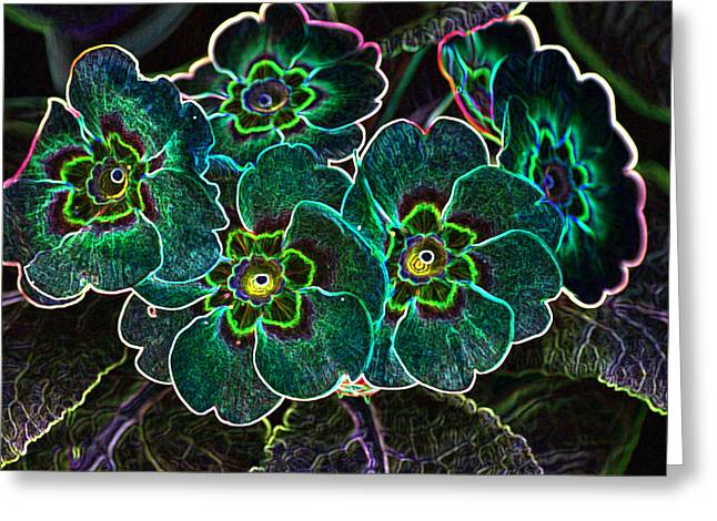 Primroses Mixed Media Greeting Cards - Glowing Primrose Flowers Greeting Card by Rumyana Whitcher