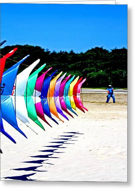 Kite Greeting Cards - Go Fly A Kite Greeting Card by John Langdon