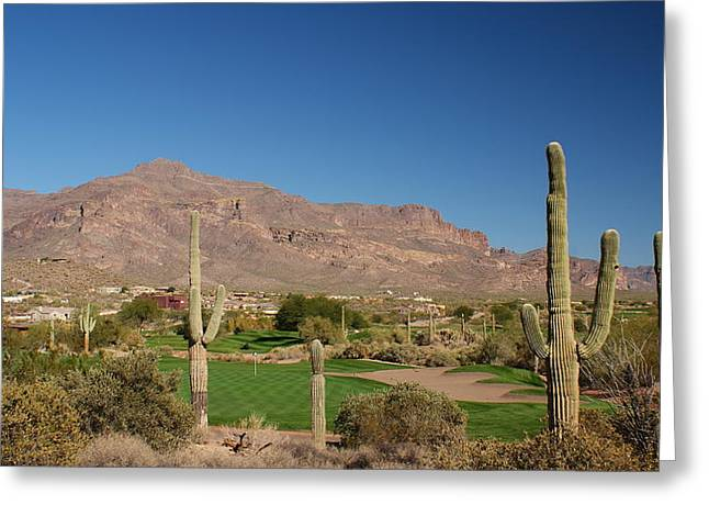 Saguaro Cactus Greeting Cards - Gold Canyon Arizona Golf Greeting Card by Michael J Bauer