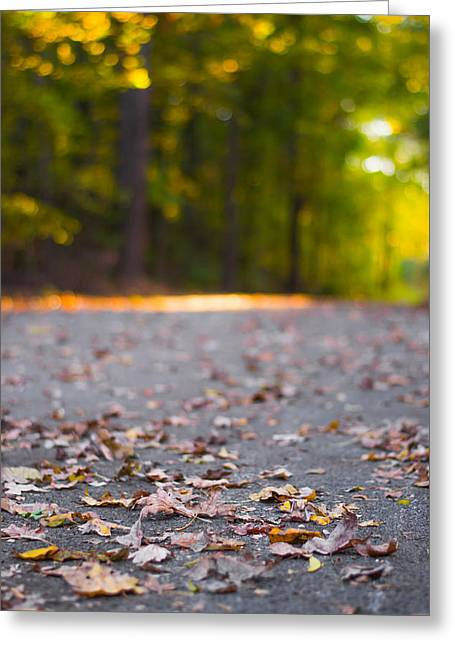 Foggy Day Greeting Cards - Golden Light Greeting Card by Shelby  Young